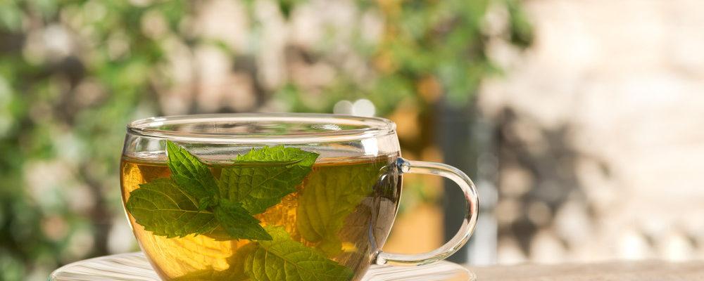 Le 10 erbe aromatiche e curative che puoi coltivare in casa - Erbe aromatiche in casa ...