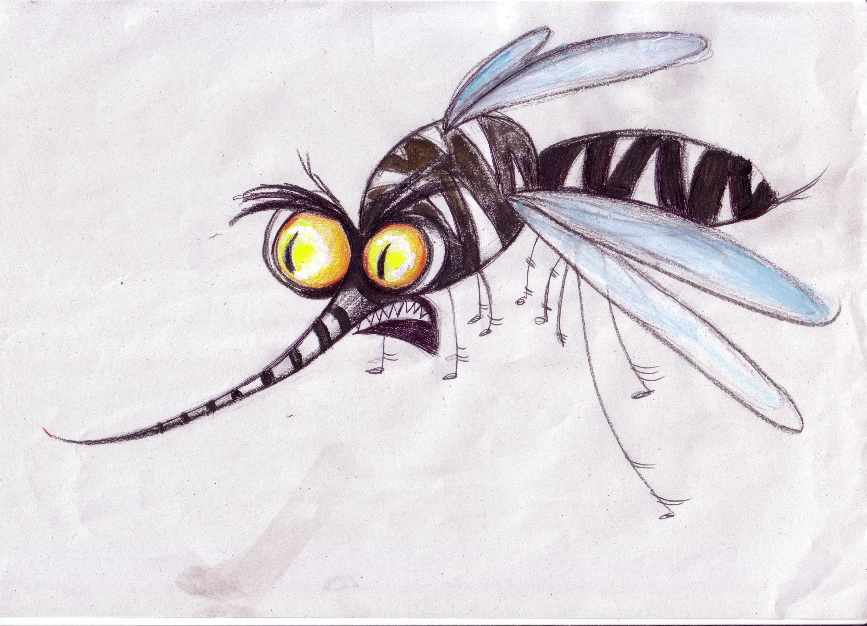 Punture di zanzare 10 rimedi fai da te per alleviarne il for Le zanzare non pungono i malati