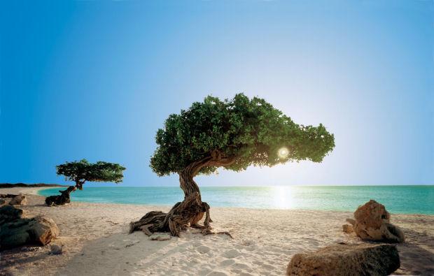Autunno: otto destinazioni perfette per le vacanze