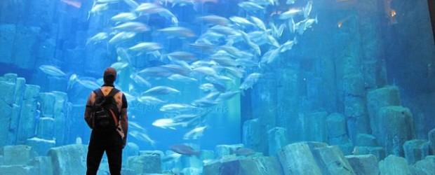 acquario Parigi