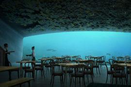 norvegia ristornate subacqueo